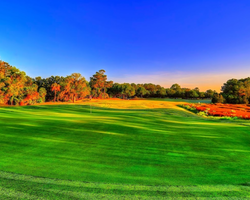 Golf Vacation Package - Historic Charleston Stay & Play from $160 per person, per day
