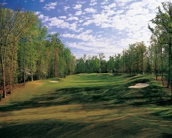 Golf Vacation Package - Golden Horseshoe Golf Club - Green Course