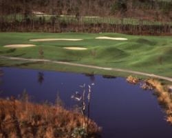 Golf Vacation Package - LPGA International - Jones Course