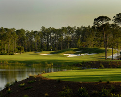 Golf Vacation Package - Old Corkscrew Golf Club